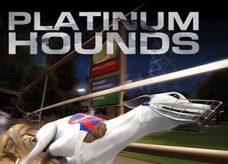 Platinum Hounds