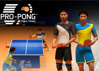 Pro-Pong Table Tennis
