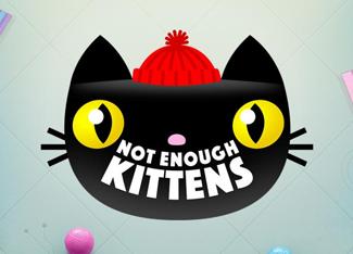 Not Enough Kittens